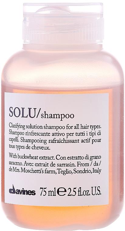 Intensives Reinigungsshampoo - Davines Solu Shampoo