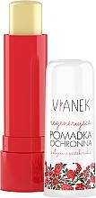 Düfte, Parfümerie und Kosmetik Regenerierender Lippenbalsam mit Himbeersamenöl - Vianek Lip Balm