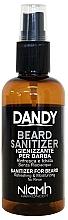 Düfte, Parfümerie und Kosmetik Bart- und Schnurrbartspray - Niamh Hairconcept Dandy Beard Sanitizer Refreshing & Moisturizing