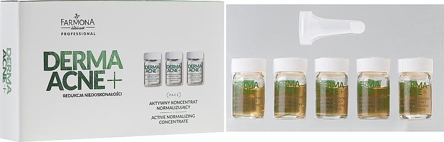 Aktives Normalisierungskonzentrat gegen Akne - Farmona Professional Dermaacne+ Active Normalizing Concentrate