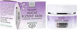 Düfte, Parfümerie und Kosmetik Nachtcreme mit Hyaluronsäure und Coenzym Q10 - Bione Cosmetics Exclusive Organic Night Facial Cream With Q10