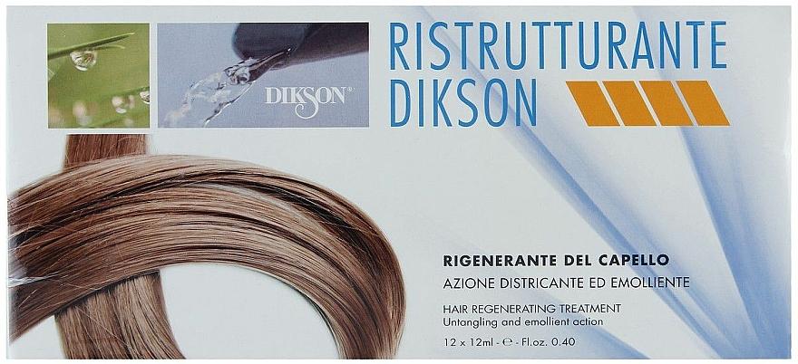 Regenerierendes Haarpräparat mit glättender und leicht kämmbarer Wirkung  - Dikson Ristrutturante