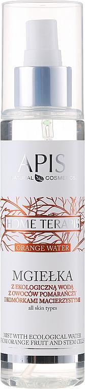 Gesichtsspray mit Bio Orangenwasser und Stammzellen - Apis Professional Home terApis Mist Organic Orange Fruit Water
