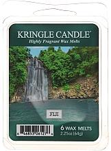 Düfte, Parfümerie und Kosmetik Tart-Duftwachs Fiji - Country Candle Fiji Mini Wax Melts