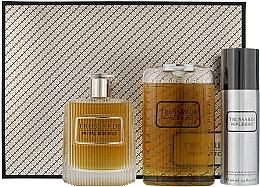 Düfte, Parfümerie und Kosmetik Trussardi Riflesso Man Set - Duftset (Eau de Toilette 100ml + Duschgel 200ml + Deodorant 100)