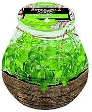 Düfte, Parfümerie und Kosmetik Garten Patio Licht Citronella-Basilikum - Bolsius Candle 94 mm x 91 mm