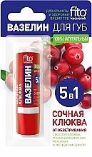 Düfte, Parfümerie und Kosmetik Lippenvaseline mit saftigen Heidelbeeren - Fito Kosmetik