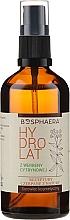 Düfte, Parfümerie und Kosmetik Feuchtigkeitsspendendes Gesichtshydrolat mit Eisenkraut - Bosphaera Hydrolat