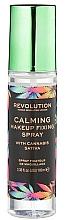 Düfte, Parfümerie und Kosmetik Make-up Fixierspray - Makeup Revolution Calming Setting Spray with Canabis Sativa