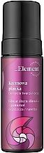 Düfte, Parfümerie und Kosmetik Cremiger Anti-Aging Gesichtsreinigungsschaum mit Schneckenschleimfiltrat - _Element Snail Slime Filtrate Creamy Foam For Face Care