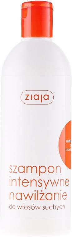 Feuchtigkeitsspendendes Shampoo für trockenes Haar - Ziaja Shampoo