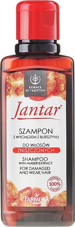 Shampoo mit Bernsteinextrakt für strapaziertes Haar - Farmona Jantar