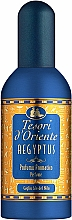Düfte, Parfümerie und Kosmetik Tesori d`Oriente Aegyptus - Eau de Parfum