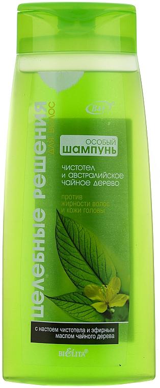 Shampoo für fettiges Haar mit Schöllkraut und australischem Teebaumöl - Bielita Celandine and Australian Tea Tree Shampoo