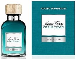 Düfte, Parfümerie und Kosmetik Adolfo Dominguez Agua Fresca Citrus Cedro - Eau de Toilette
