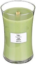 Düfte, Parfümerie und Kosmetik Duftkerze im Glas Fern - WoodWick Hourglass Candle Fern