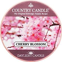 Düfte, Parfümerie und Kosmetik Duftkerze Daylight Cherry Blossom - Country Candle Cherry Blossom