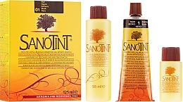 Düfte, Parfümerie und Kosmetik Haarfarbe mit Goldhirse und Kräuterextrakten - Sanotint Classic