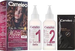 Düfte, Parfümerie und Kosmetik Dauerwell-Lotion für alle Haartypen - Delia Cameleo Herbal Wave