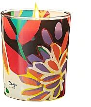 Düfte, Parfümerie und Kosmetik Duftkerze Vertige Solaire - Baija Vertige Solaire Scented Candle