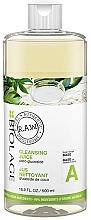 Düfte, Parfümerie und Kosmetik Reinigungsshampoo - Biolage R.A.W. Fresh Recipes Cleansing Juice Base