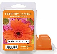 Düfte, Parfümerie und Kosmetik Tart-Duftwachs Sunshine & Daisies - Country Candle Sunshine & Daisies Wax Melts