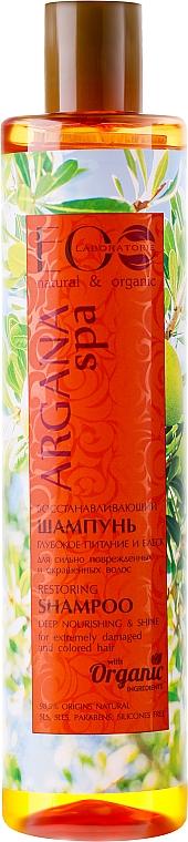 Regenerierendes Shampoo für extrem beschädigtes und coloriertes Haar - ECO Laboratorie Argana SPA Shampoo