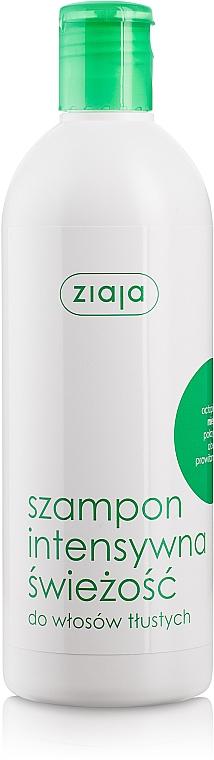 """Erfrischendes Shampoo für fettiges Haar """"Minze"""" - Ziaja Shampoo"""