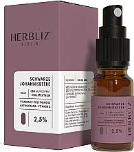 Düfte, Parfümerie und Kosmetik Mundspray Schwarze Johannisbeere 2,5% - Herbliz CBD Oil Mouth Spray 2,5%
