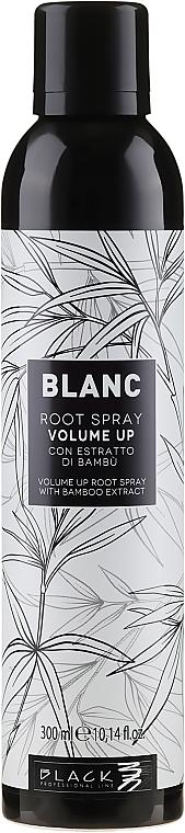 Volumen-Haarspray mit Bambusextrakt - Black Professional Line Blanc Volume Up Root Spray