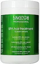 Düfte, Parfümerie und Kosmetik Haarkur mit 12 Pflanzenextrakten - BingoSpa Spa Treatment For Hair 12 Plant Extracts